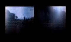 """Blu""(per Antonio) (Maria Evgenidu) Tags: yashicamat124 yashica lomography lomo lomographyxr50200 expired film expiredfilm pellicola pellicolascaduta analogue analog analogico analogica analogphotography analogpassion fotografiaanalogica filmisnotdead finchècèpellicolacèsperanza filmisawasteoftime filmroll thefilmexperience theanalogproject thefilmcommunity truegrain tlr beanalogic iamastoryteller iscanbymyself"
