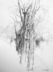 P1017819 (Gasheh) Tags: art painting drawing sketch tree trees street city yerevan pencil gasheh 2018