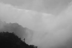Tum03_small (patcaribou) Tags: tucson tumamochill sonorandesert fog cactii saguarocactus