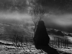20161127094732_0039-20.jpg (rossatovalerio) Tags: nebbia palombara monteflavio mattina paesaggi moricone atmosfera