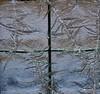 IJsbloemen / Ice flowers (corrie.nijenmanting) Tags: winter ijsbloemen iceflowers vorst frost