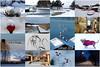 Februari 2018 (evisdotter) Tags: februari2018 winter collage snow dog buoys jetty landscapes shop harbor boat birds allpicssooc åland