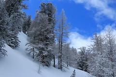 Champex-Lac (bulbocode909) Tags: valais suisse champexlac montagnes nature hiver neige nuages arbres forêts bleu paysages