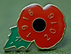 Poppy Pin Badge (fimb64) Tags: fimb64 paulfowler macro macromondays lessthananinch macromondayslessthananinch sonya33 sony badge