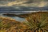 Isla del Sol, lago Titicaca (Bolivia) (bit ramone) Tags: pentaxk5 pentax bitramone isla island sol sun isladelsol bolivia copacabana lake lagotiticaca travel viajes agua water inti viracocha árbol cielo paisaje puesta de bosquemontañabotehierbaríomadera coth5