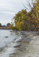 2017-10-22_11-32-36 Lake Ontario (canavart) Tags: autumn princeedwardcounty ontario canada lakeontario lakeshore lake waves beach