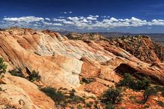 Yant Flat, Utah (Chief Bwana) Tags: ut utah yantflat navajosandstone psa104 chiefbwana