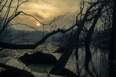 in the wetlands (kasia.rubiszewska) Tags: wetlands sunset water sony