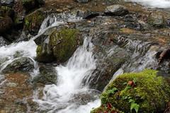 China Gulch (rozoneill) Tags: rogue river trail blm medford grants pass galice whiskey creek cabin graves rainie falls rapids oregon hiking