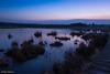 Elstead Moat.002 (***tuttifrutti***) Tags: sunrise landscape bog nature elstead elsteadmoat canon canon5d canon5dm3 canon5dmkiii canonlenses canon1635mm canon1635mmf4l