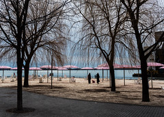 Day At The Beach (Yewbert The Omnipotent) Tags: toronto canada lightroom lake city downtown beach muslim burka colour nikon d750 tamron 35mm winter people candid