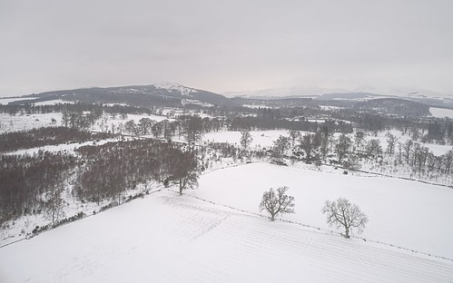 Above Muthill 2