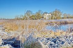 Raureif (garzer06) Tags: frost raureif winter winterlandscape deutschland üselitz winterlandschaft mecklenburgvorpommern baum landschaftsbild landschaftsfoto inselrügen vorpommern insel landschaft rügen landschaftsfotografie landscapephotography