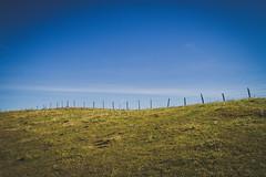 (c) Wolfgang Pfleger-8447 (wolfgangp_vienna) Tags: niederösterreich loweraustria austria österreich schneeberg schneebergland herbst autumn colorful bunt wald wiese blue blau blauerhimmel