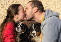 DSC00294-Edit-Edit (sportsHUN) Tags: landscape babys dogs puppies portre