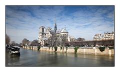 Paris en hiver (Rémi Marchand) Tags: îledelacité paris squarejeanxxiii cathédrale notredame seine poselongue canon7d cathédralenotredamedeparis