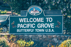 welcome to pacific grove california welcome sign (DigiDreamGrafix.com) Tags: usa california pacificgrove bluesky pacificocean unitedstatesofamerica pinkflowers weekendtrip coastalcity montereybay naturalscenery populartouristdestination montereycounty slowtime iceplants romanticescape coolsummers coolwinds holiday travel summer landscape calm quiet trees inspiration meditation relax beach tourism tranquility panorama discovery trip rocks honeymoon