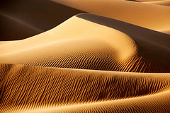 heart of desert (Xabbi Tours) Tags: africa morocco maroc sahara desert sand dunes landscapes nature natural scenic wallpaper background texture fineart