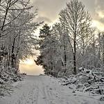 Schnee. thumbnail