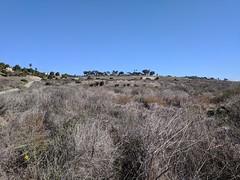 IMG_20180122_114341 (joeginder) Tags: jrglongbeach whitepoint sanpedro californa coast