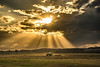 Life on the Land (Robert Skidmore) Tags: nikon tamron landscape clouds sunrays sunset australia queensland farmers farmlife tractor rural outback