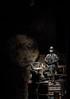 20180127-16 (Augustin BIRAU) Tags: teatrulmasca casacunebuni masca teatru