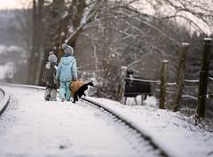 Sundays (agirygula) Tags: sunday children walk winter time childhood family horse teddy cat animald kids snow