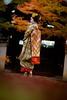 Maiko_20171120_12_16 (Maiko & Geiko) Tags: myokakuji temple fukuno kyoto maiko 20171120 舞妓 妙覚寺 ふく乃 京都 宮川町 河よ志 miyagawacho kawayoshi mait