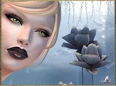 Eyes-set01-MPP (loreleilcoeur) Tags: mpp eyes women men secondlife