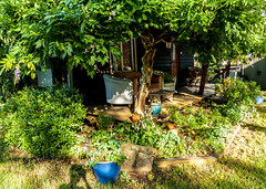 ..happiness is.. (dawn.tranter) Tags: smileonsaturday dawntranter happinessis cottage verandah hubby happywifey garden country