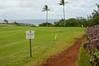 The fine line to the Dragon's Teeth (radargeek) Tags: hawaii maui isleofmaui palmtree kapalua trail dragonsteeth may 2017
