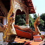 Wat Phra Singh. วัดพระสิงห์ thumbnail