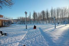 Fotógrafo en la nieve (Oubeos) Tags: nieve fotógrafo soleado blanco leonesp huellas león lorenzana parquedelorenzana castillayleón parque arboles farola árbol cielo