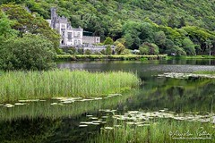 Kylemore Abbey (Aurelien Pottier) Tags: kylemore kylemoreabbey abbayedekylemore lake lac lough kylemorelough eau water vert green chateau castle landscape paysage nénuphare lily forêt forest irlande ireland europe westerneurope europedelouest républiquedirlande republicofireland traveldestinations attractiontouristique connemara countygalway wildatlanticway ie