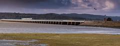 Before The Storm at Arnside Viaduct (Geoff France) Tags: train bridge arnside arnsideviaduct estuary kent kentestuary landscape coast sea shore seaside