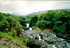 Pools of Ohe'o (East Maui) (jcc55883) Tags: film oldfilm 35mm 35mmfilm filmphotography canon canon35mm hawaii maui eastmaui sevensacredpools poolsofoheo oheogulch hanahighway palikeastream haleakalanationalpark scenic waterfalls pools