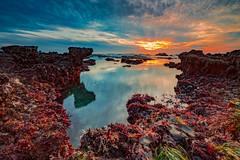 Moss beach sunset 12 (logical_j) Tags: sonya7rii sony halfmoonbay california pacificocean coast wave lowtide lagoon ocean seascape sea reflection sunset