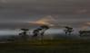 Amanhecer (Edson Roberto - Potim) Tags: amanhecer inverno neblina mantiqueira