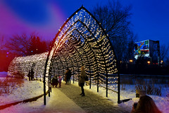 Winter Lights (Garry9600) Tags: lumix fz200 winnipeg manitoba canada cans2s theforks outdoor lights night winter path