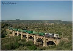 Guadalmez. (pazalberto269) Tags: spain photography d5300 diésel nikon trainspotting tracks trainspotter tren prima power bridge paisajes