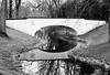Morningrise (janmalteb) Tags: deutschland germany bremen brücke bridge wasser water fluss river friedhof graveyard mirror spiegelung reflection reflektion bäume trees schwarz weiss black whit monochrom monochrome blackwhite canon eos 77d tamron 18200mm