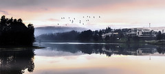Sunset over the Dam (Explored) (tomas.jezek) Tags: sunset dam water reflection mirror nature spa urbannature luhacovice czechia horizon birds sky landscape panorama vista trees evening recreation holiday trip explore d7100 nikon mist fog red orange yellow mood atmospheric