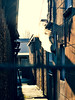 Smoking chimney in a hidden alley (CloudBuster) Tags: city stad schoorsteen chimney rokend smoking steegje alley doorkijkje see through fence hek wall muur brown bruin grey grijs tuesday dinsdag