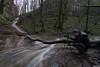 Mike prenant une photo en amont du Ruisseau des Champs du Poix - Coulans Sur Lison (francky25) Tags: mike prenant une photo en amont du ruisseau des champs poix coulans sur lison franchecomté doubs portrait