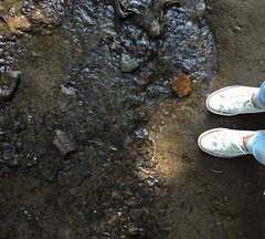 Mini river. ✨ (lorenapérez25) Tags: camarasony