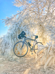 Bike Baroque (Philocycler) Tags: chicago illinois unitedstates us iphonex ice icetree chicagolakefront