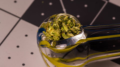 in the pipe (soggymuppet62) Tags: weed kush 420 marijuana cannabis smokeweed blazedit ganja citrix macro