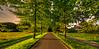 Summer road. (Alex-de-Haas) Tags: 11mm d750 dutch hdr haarlem irix nederland nederlands netherlands nikon noordholland daglicht daylight highdynamicrange landscape landschap overdag road summer weg zomer