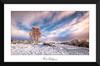 Tree of Life (Ken Walker Photography) Tags: sunshine landscape winter highlands warmth silverbirch rannochmoor tree scotland clouds snow