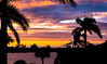 Sunset in Florida (kaylea.viadero) Tags: sunset beach florida night 365 project365 day12 color palm tree silhouette water river boat birds bridge peaceful warm humid vacation